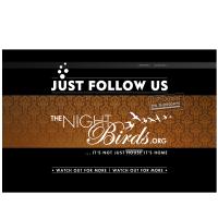 02_WN-PortfolioNightbirds